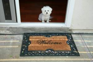 To make a good first impression on potential buyers, invest in a new welcome mat. This small investment can make a huge difference. SHUTTERSTOCK PHOTOS