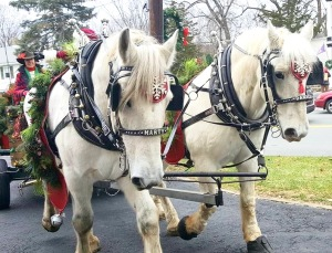 A horse drawn ride with Santa in Sugar Loaf Art & Craft Village Image Provided by Store