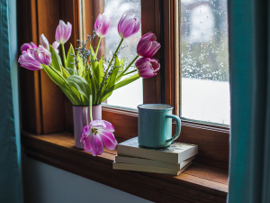 Flowers, books and a mug on a window sill