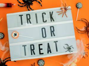 Tick or treat sign with candy and spiders around it